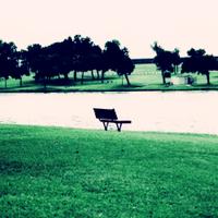 Empty_benchsqblue_shadows_peach_hig