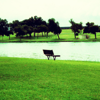 Empty_benchsqxpro_effect_copy_3
