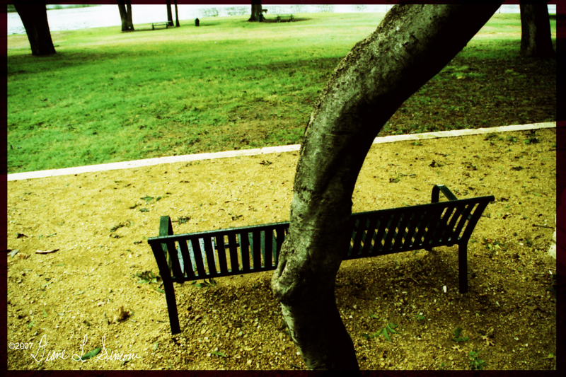 Park_bench1_bordered_and_signed_cop
